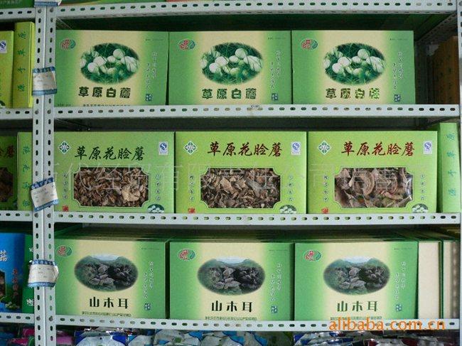 蘑菇简笔画图片大全; 内蒙古特产--林区花脸蘑菇