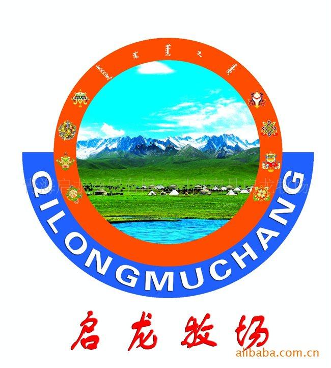 河南县拥有全国三大名马之一的河曲马、青海名优畜种欧拉羊.高清图片