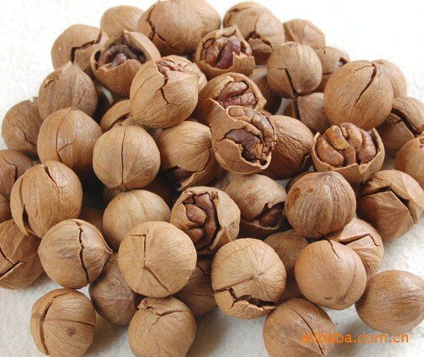 山核桃仁含蛋白质,脂肪