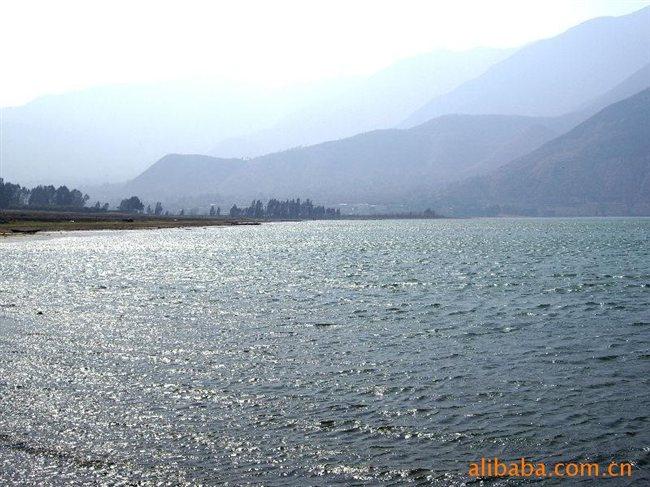 供应丽江程海湖特产,程海牌螺旋藻精片 昆明梵塔西