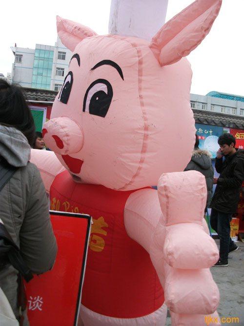 小猪很可爱哦~卡通形象历来受青睐