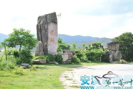 虎邱镇是我县茶叶主产区,安溪名茶黄金桂和佛手茶的发源地,同时也是