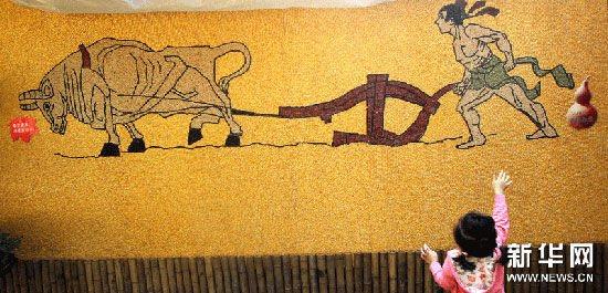 山东五谷杂粮煎饼 五谷杂粮创意 创意五谷杂粮贴画