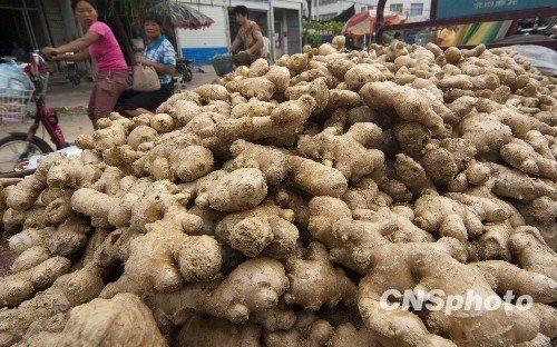 """事件被曝光后,广州、山西和江苏等地紧急检测市场上在售生姜,一时之间,产自山东地区的生姜备受""""关照""""。"""
