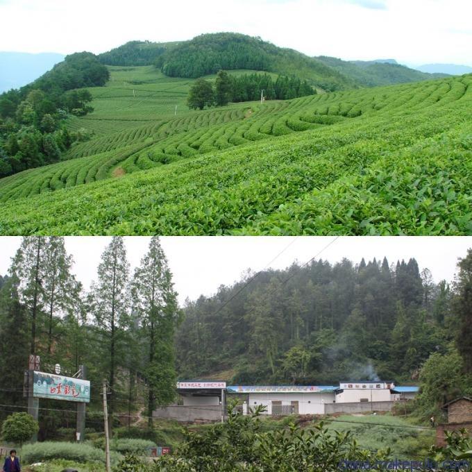 位于风景秀丽的湘西北土家族聚居区,毗邻石门县白云山国家森林公园